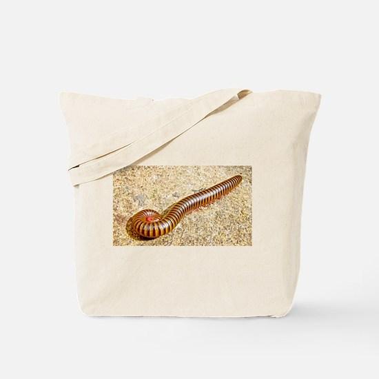 Millipede Tote Bag