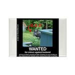 Bad Katya Rectangle Magnet (100 pack)