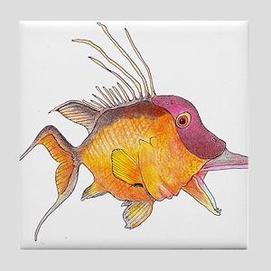 Hogfish Tile Coaster