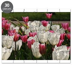 Sea of tulips, Puzzle