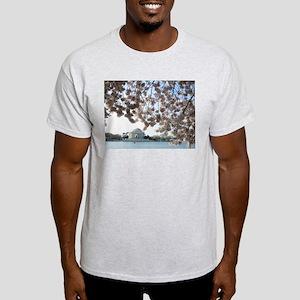 Peal bloom cherry blossom frames Jefferson Memoria