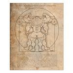 Gleneicki's MUSCLEHEDZ Man - Small Poster