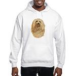 Havanese Hooded Sweatshirt