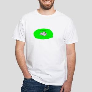 Glacial Erratic White T-Shirt
