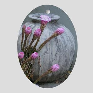 Solstice Cactus Oval Ornament