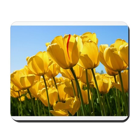 Tulips in sunshine Mousepad