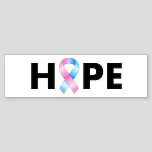 Pink & Blue Ribbon Hope Sticker (Bumper)