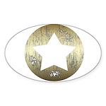 Distressed Vintage Star 3 Sticker (Oval 50 pk)
