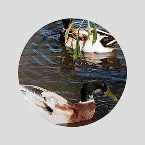 Ducks on the lake Button