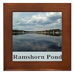 Ramshorn Pond Framed Tile