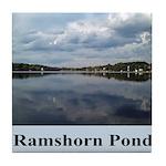 Ramshorn Pond Tile Coaster