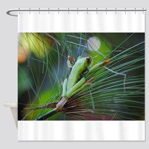 Green and Red Frog on a Leaf 3 Shower Curtain