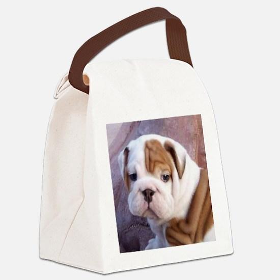 Funny Kids bulldog Canvas Lunch Bag