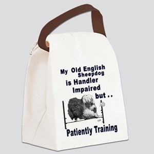 OES Agility Canvas Lunch Bag