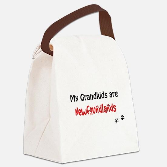 Newfie Grandkids Canvas Lunch Bag