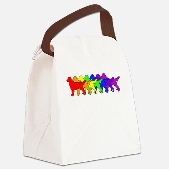 Rainbow Flatcoat Canvas Lunch Bag