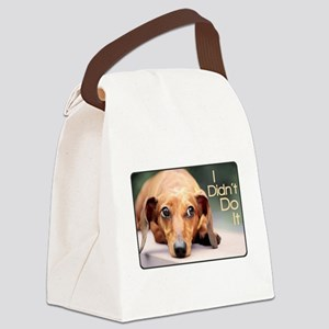 didntdoit Canvas Lunch Bag