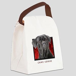 15-redblock Canvas Lunch Bag