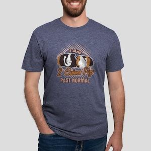 I Am 2 Guinea Pigs Past Nor Mens Tri-blend T-Shirt