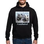Keeshond Brothers Hoodie (dark)