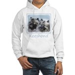 Keeshond Brothers Hooded Sweatshirt