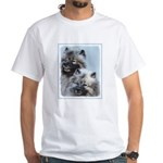 Keeshond Brothers Men's Classic T-Shirts