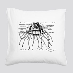 Diagram Of Jellyfish Square Canvas Pillow