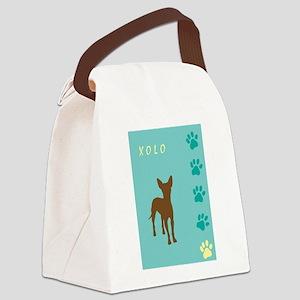 xolo teal tallish Canvas Lunch Bag