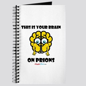Brain On Prions 02 Journal