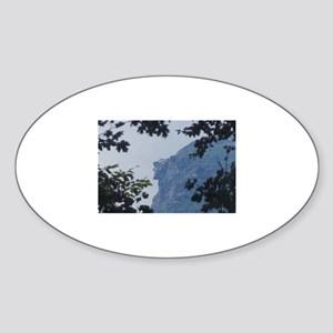 Old Man in Trees Oval Sticker