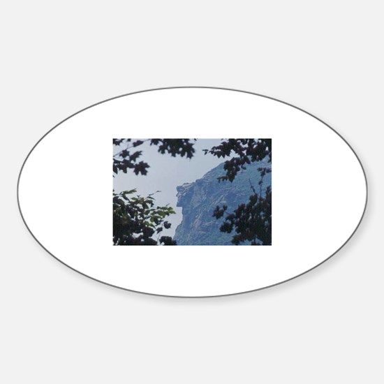 Old Man in Trees Oval Decal