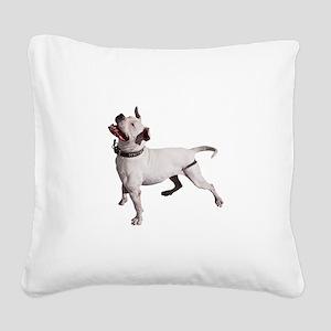 FIN-pit-bull-photo Square Canvas Pillow