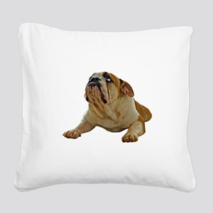 FIN-bulldog-lying-photo Square Canvas Pillow