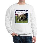 Dreams v2 Sweatshirt
