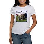 Dreams v2 Women's T-Shirt