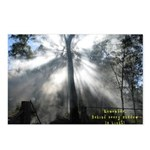 Glasshouse Country Postcards (Package of 8)
