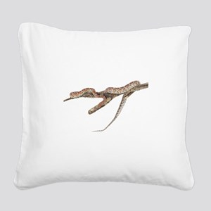FIN-red-rat-snake-TRANS Square Canvas Pillow