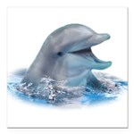 Happy Dolphin Square Car Magnet 3