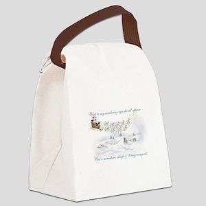Rein-fnt Canvas Lunch Bag