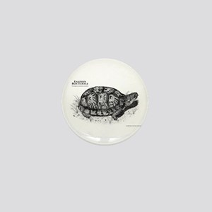 Eastern Box Turtle Mini Button