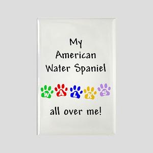 Water Spaniel Walks Rectangle Magnet