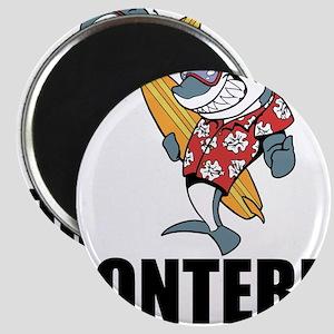 Monterey, California Magnets
