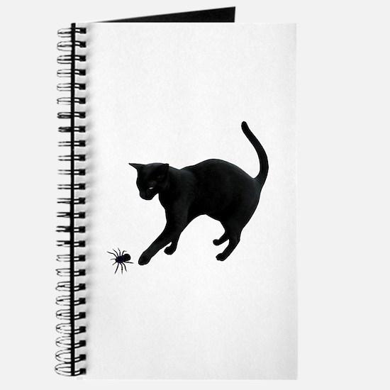 Black Cat Spider Journal