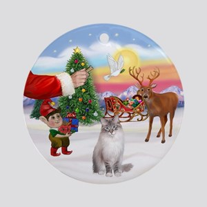 Treat for a Ragdoll (LynxCPt) Ornament (Round)