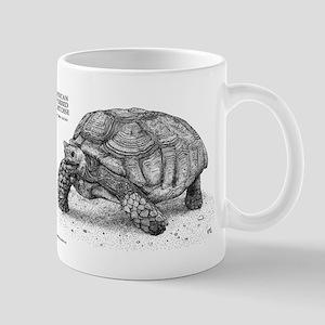 African Spurred Tortoise Mug