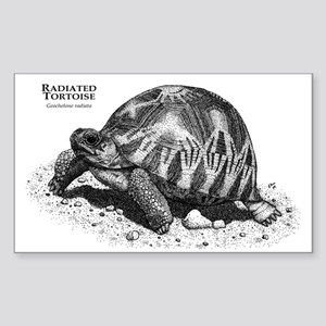 Radiated Tortoise Rectangle Sticker