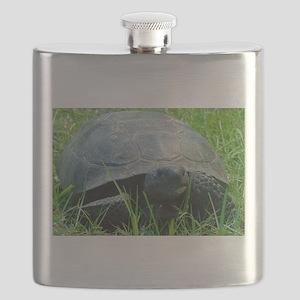 Gopher Tortoise Flask