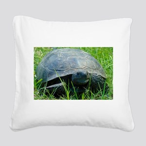 Gopher Tortoise Square Canvas Pillow