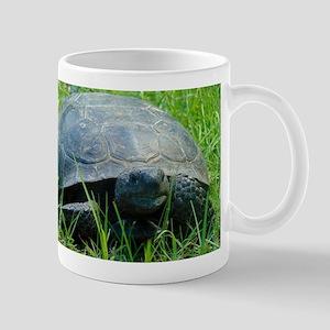 Gopher Tortoise Mugs