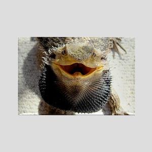 Bearded Dragon Rectangle Magnet